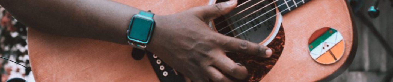 Animal Kingdom Guitar Player